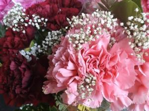flower-691448_1280