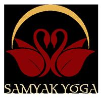 L'attribut alt de cette image est vide, son nom de fichier est SAMYAK-logo-fullwidth-header-logo-200px.png.
